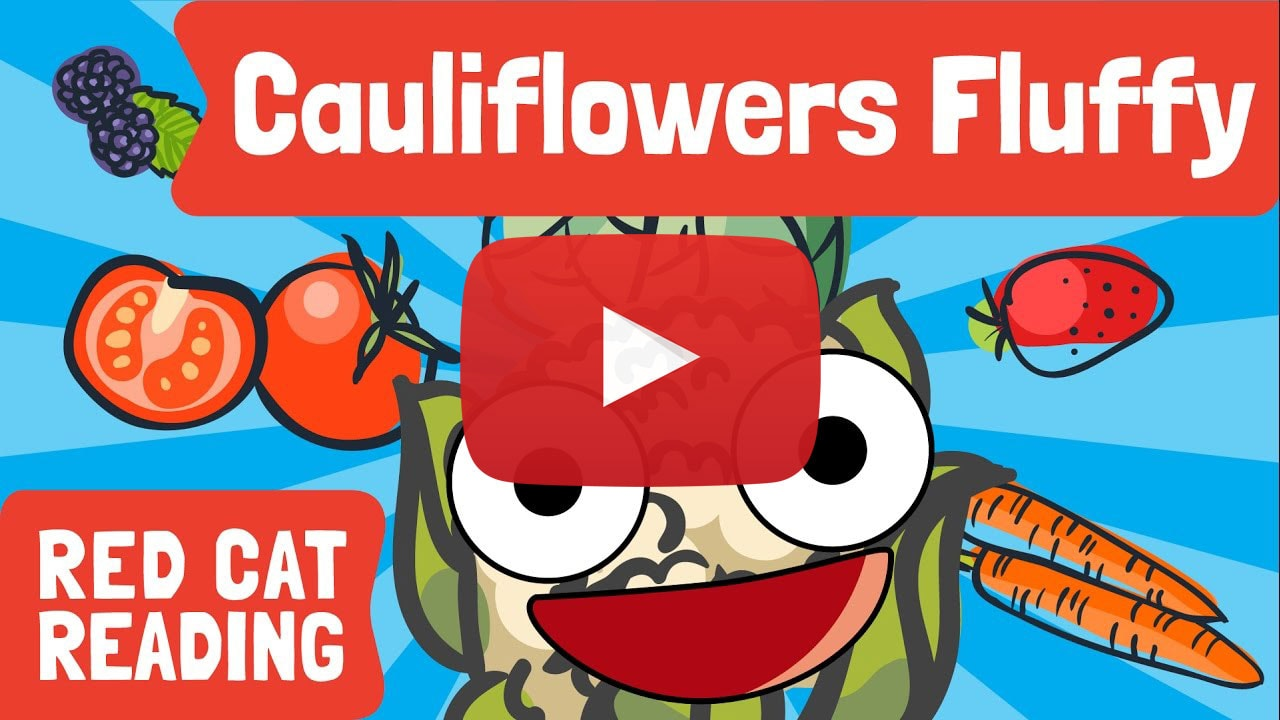 Red Cat Reading Kids vs Life Cauliflower Fluffy