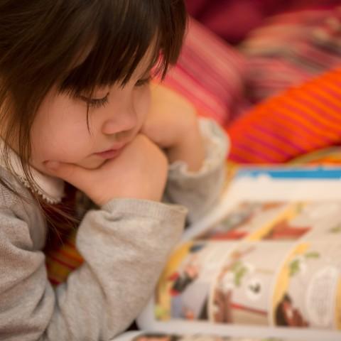 Red Cat Reading National Children's children's books reading girl learn writing