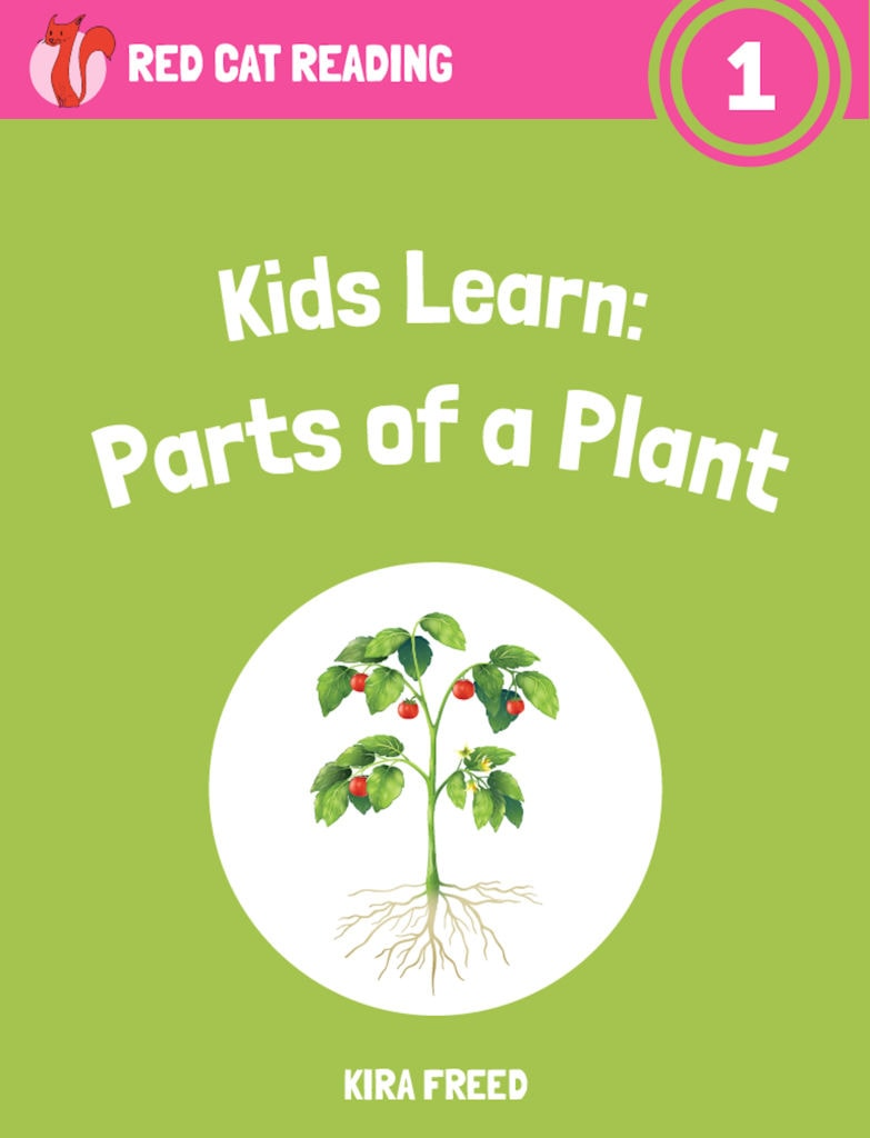 about parts of a plant