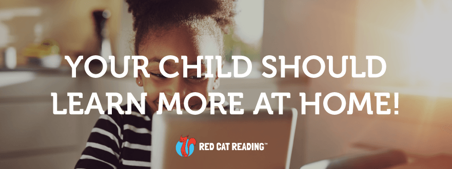 Red Cat Reading Your Child Should Learn More at Home